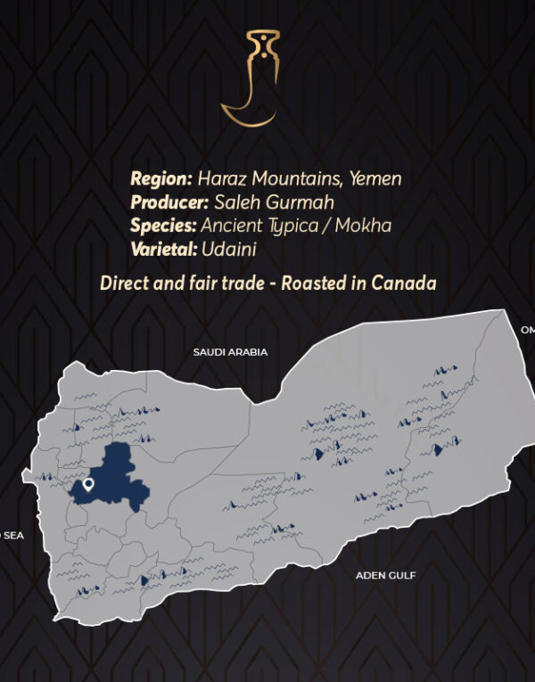 Gurmah Yemen Specialty Coffee Canada Mokha Bunn